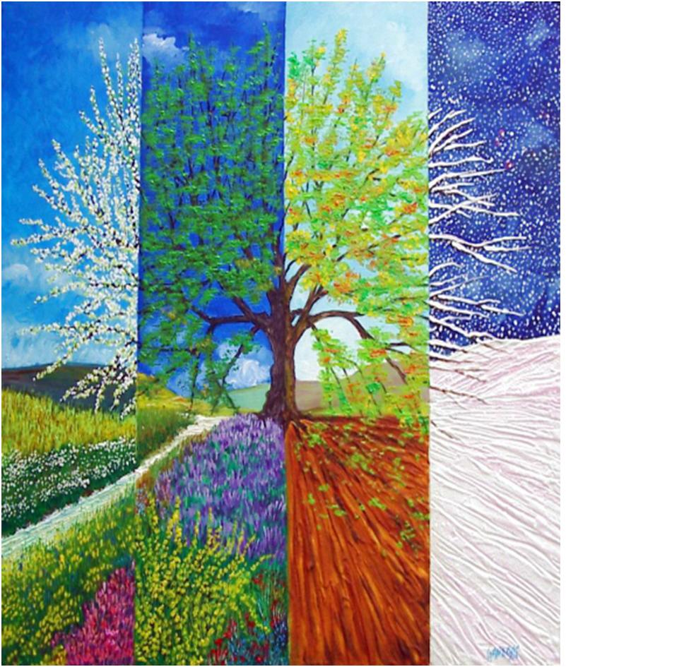 Quattro stagioni - Immagini di quadrifoglio a quattro foglie ...